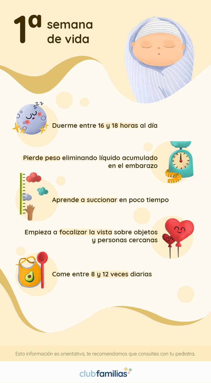 Infografías primer año